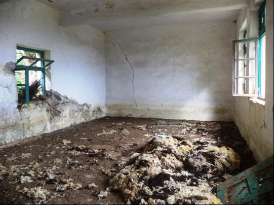 χωρδάκι πρόβατα μαθητές ερείπια
