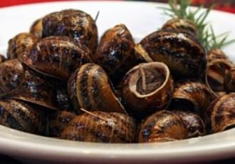 χοχλιοί μπουμπουριστοί φαγητό λάπας συνταγή