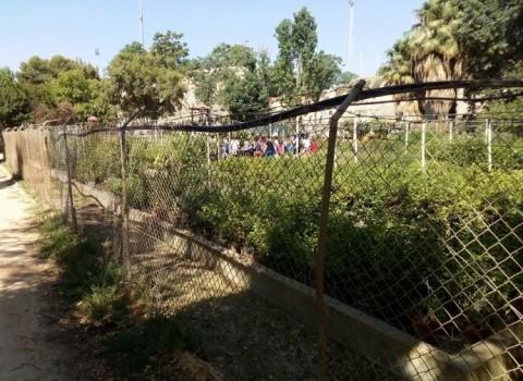 πάρκο όαση βιωματικές δράσεις φακουρέλης πράσινο τείχη