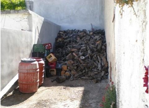 φουντεδάκης πρόβλεψη καιρού μετεωρολόγοι σφήκες λαγοί βαρυχειμωνιά ξύλα