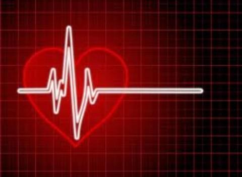 Φωτεινή Αγραφιώτη Πολυτεχνείο Κρήτης HeartID ταυτότητα καρδιά
