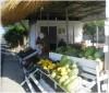 καλύβες πάνορμο φρούτα λαχανικά τζίρος τουρίστες εμπόριο